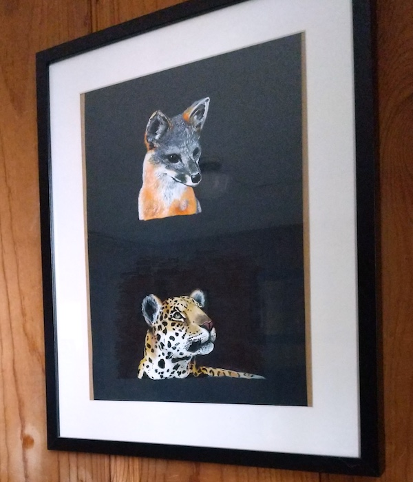 Fox, Jaguar, framed